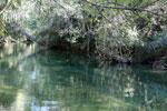 Rio Formoso in Bonito