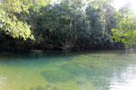 Estancia Mimosa river [bonito_0287]