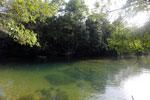 Estancia Mimosa river [bonito_0288]