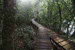 Wood walkway at Hotel Cabanas