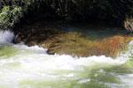 Rio Formoso [bonito_0537]