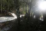 Boiling rapids on the Rio Formoso [bonito_0710]