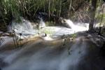 Boiling rapids on the Rio Formoso [bonito_0712]