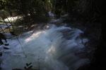 Boiling rapids on the Rio Formoso [bonito_0722]