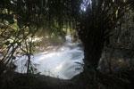 Boiling rapids on the Rio Formoso [bonito_0724]
