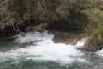 Rapid on the Rio Formoso [bonito_0756]