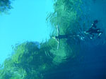 Lagoa Misteriosa [bonito_0797]