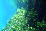 Lagoa Misteriosa [bonito_0806]