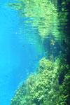 Lagoa Misteriosa [bonito_0807]