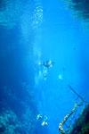Lagoa Misteriosa [bonito_0808]