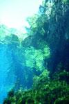 Lagoa Misteriosa [bonito_0814]