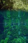 Lagoa Misteriosa [bonito_0822]