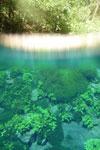 Lagoa Misteriosa [bonito_0823]