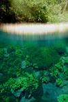 Lagoa Misteriosa [bonito_0824]