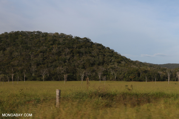 Forest fragments and cattle pasture [bonito_0159]