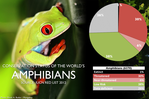 Chart: conservation status of the world's amphibians