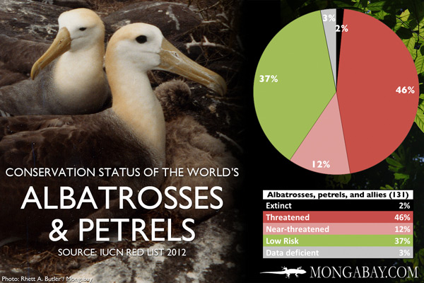 Chart: conservation status of the world's albatrosses, petrels, and allies