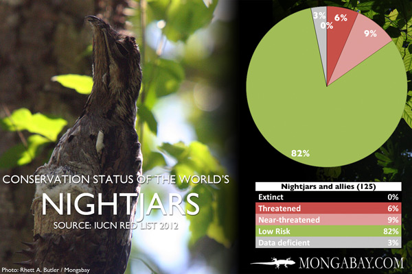 Chart: conservation status of the world's nightjars, nighthawks, frogmouths, and potoos