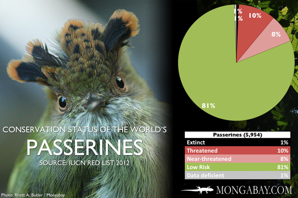 Chart: conservation status of the world's passerine birds