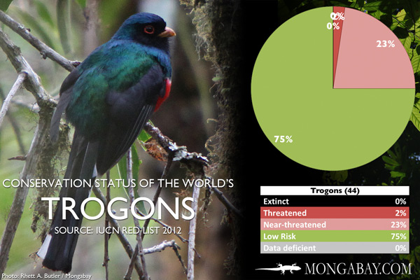 Chart: conservation status of the world's trogons
