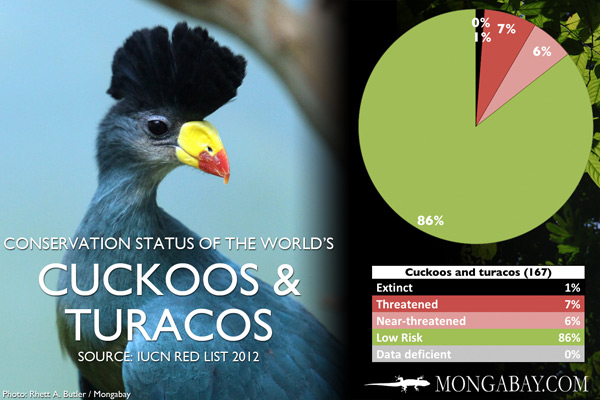 Chart: conservation status of the world's cuckoos and turacos