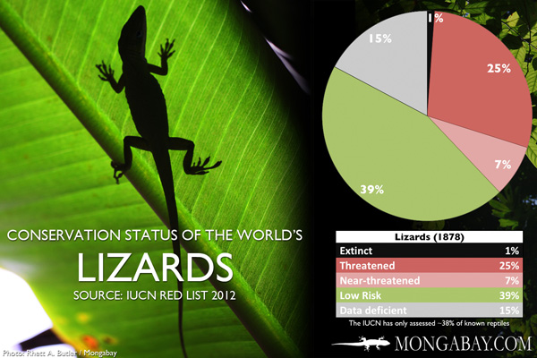 Chart: conservation status of the world's lizards