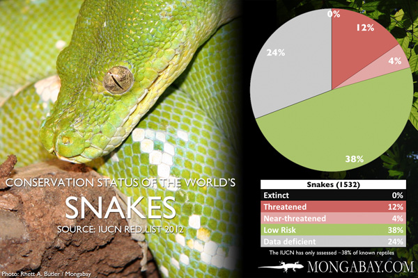 Chart: conservation status of the world's snakes
