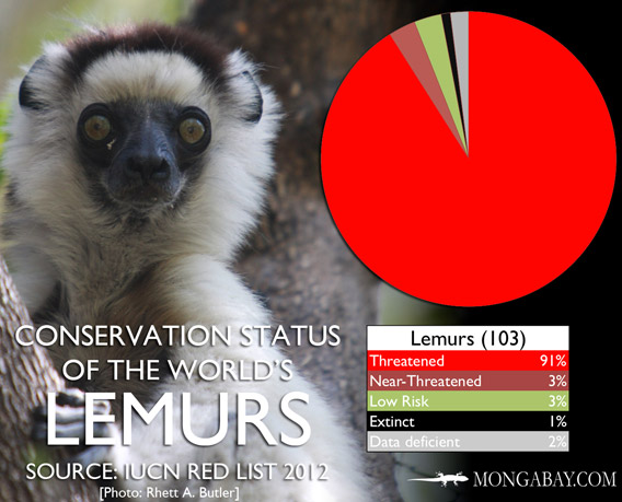 Chart: conservation status of the world's lemurs