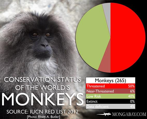 Chart: conservation status of the world's monkeys