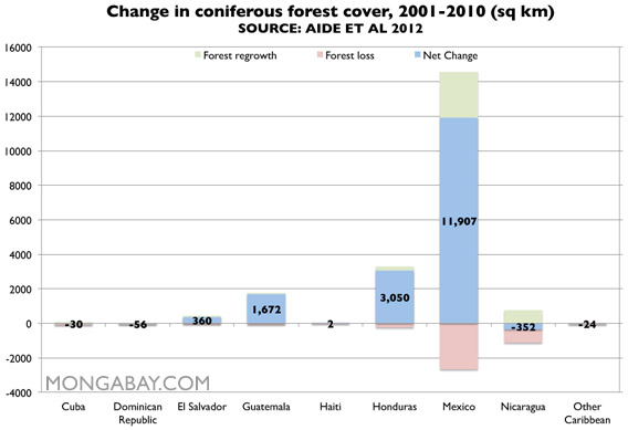 Chart: coniferous forest cover in Latin America