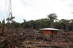 Small scale deforestation in the Colombian Amazon [colombia_0058]