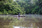Indigenous Tikuna paddling a dugout canoe on a tributary of the Amazon [colombia_1159]