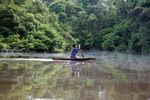 Indigenous Tikuna paddling a dugout canoe on a tributary of the Amazon