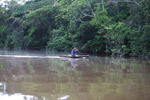 Indigenous Tikuna paddling a dugout canoe on a tributary of the Amazon [colombia_1163]