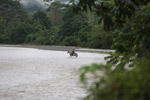 Colombian Afro-indigenous crossing a river on horseback