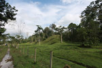 Cattle pasture and rainforest near Peñaloza [colombia_2108]