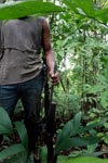 Hunter in the rainforest