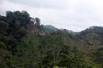 Deforestation for cattle pasture near Chugandi