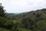 Deforestation for cattle pasture near Chugandi [colombia_2373]
