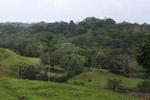 Deforestation for cattle pasture near Chugandi [colombia_2388]