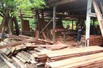 Sawmill in Capurgana