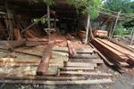 Sawmill in Capurgana [colombia_2497]