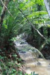 Creek between Sapzurro and Capurgana [colombia_2526]
