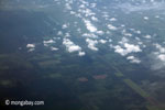 Aerial view of oil palm plantations on peatlands in Sumatra [java_0024]