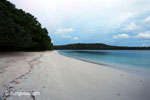 Beach on Peucang Island [java_0137]