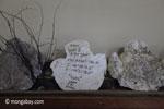 Plaster cast of a Javan rhino footprint