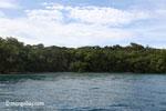 Peucang Island, West Java, Indonesia [java_0419]