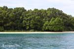 Peucang Island beach [java_0433]