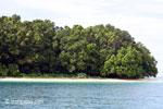 Peucang Island beach [java_0435]