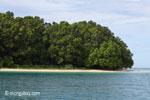 Peucang Island beach [java_0436]
